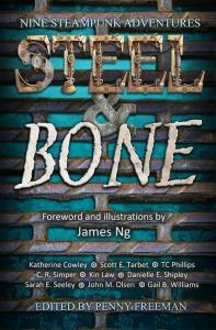 SteelBone_Bookcover_500px